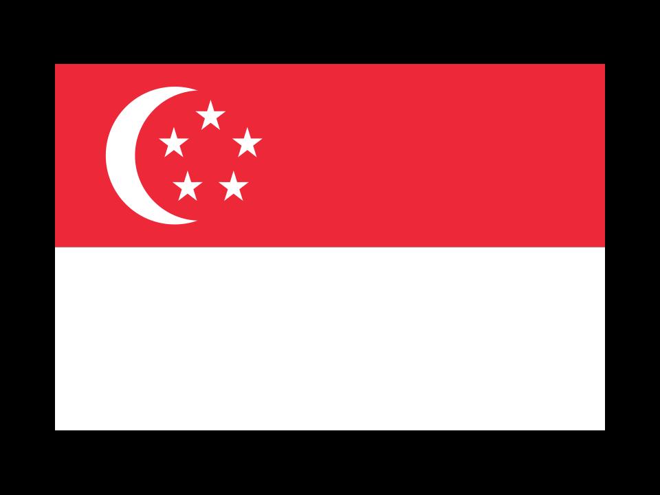 亮与星星之谜 新加坡国旗与信约的故事