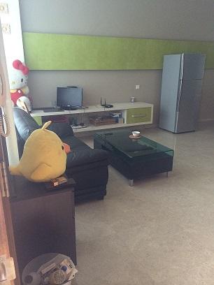 73高文精装公寓式别墅73kovan