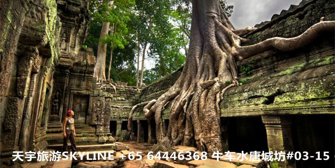 柬埔寨1.png