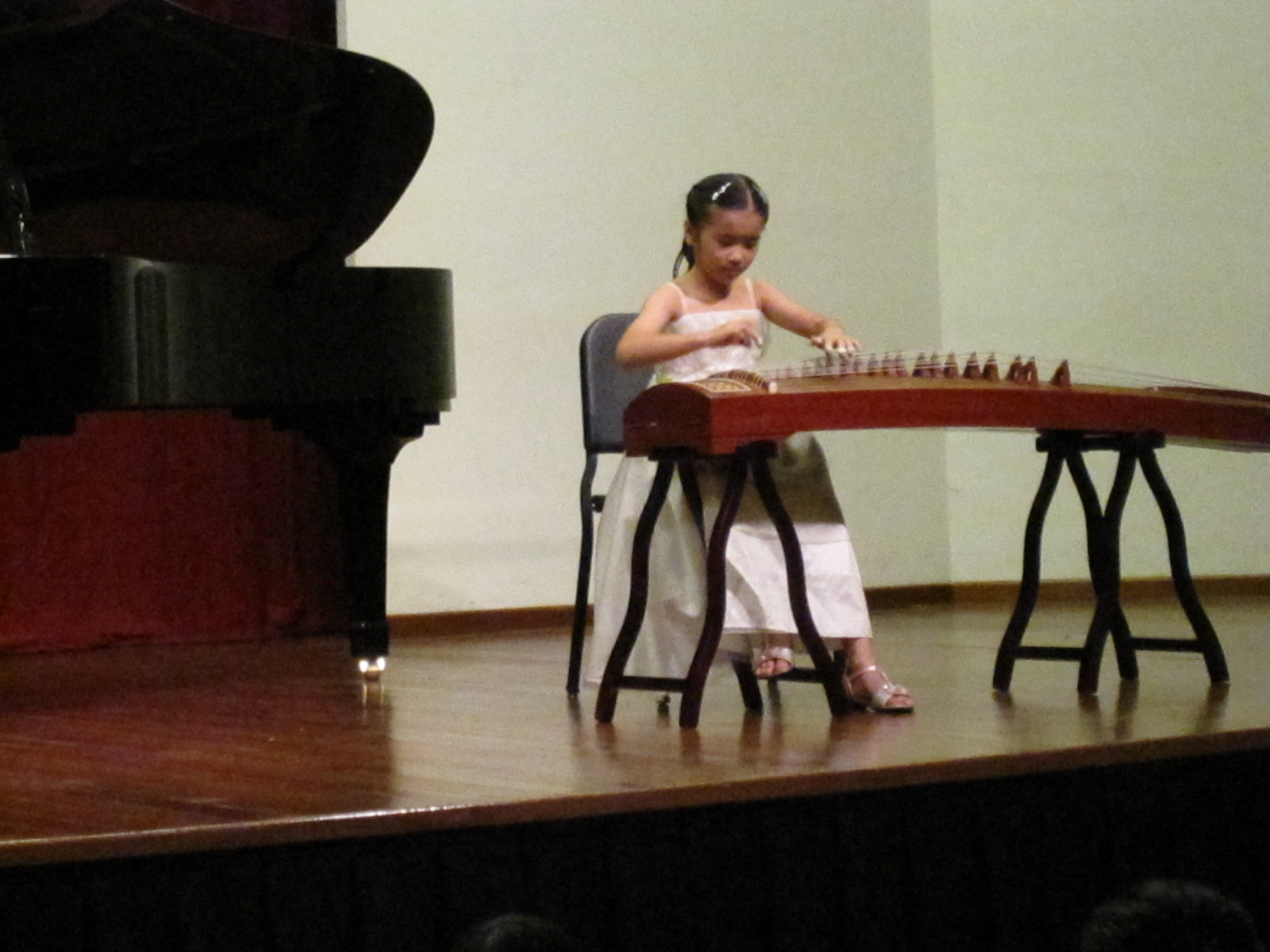 MusicConcert1 (15).JPG