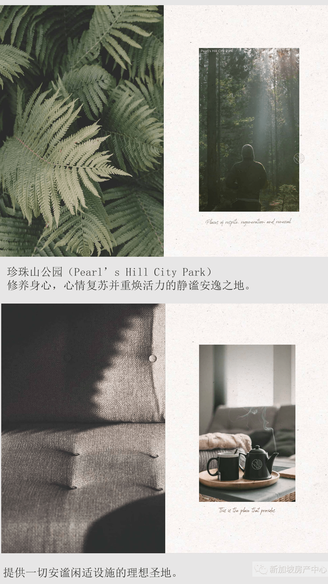 幻灯片8-min.PNG