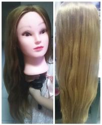 头模和假发