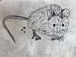 再接再厉再画一只老鼠