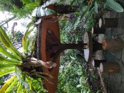 小坡岛旅游系列 - 圣淘沙一日游