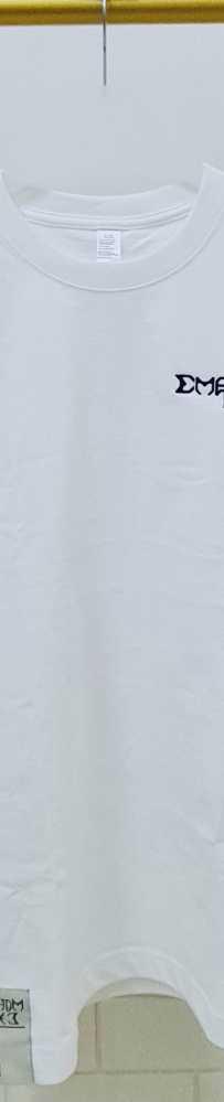 自主设计潮牌 刺绣logoT恤 270磅 25sgd 免邮!!